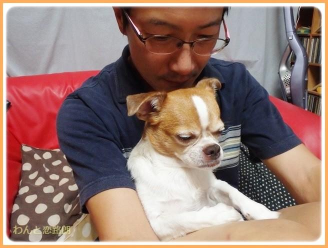 f:id:yasukazu01:20140913224745j:image