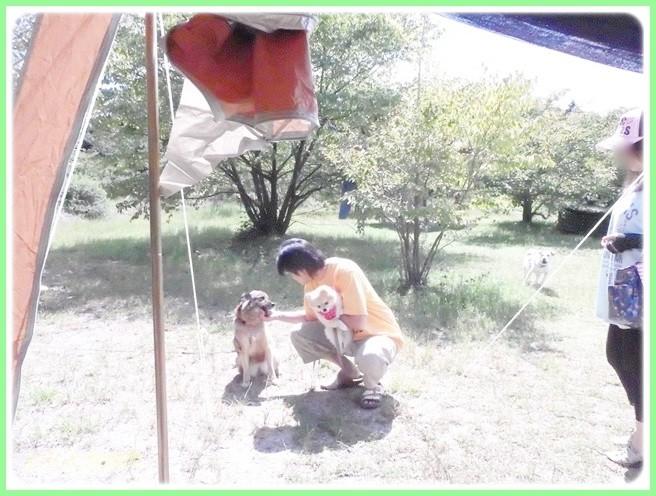 f:id:yasukazu01:20140918222531j:image
