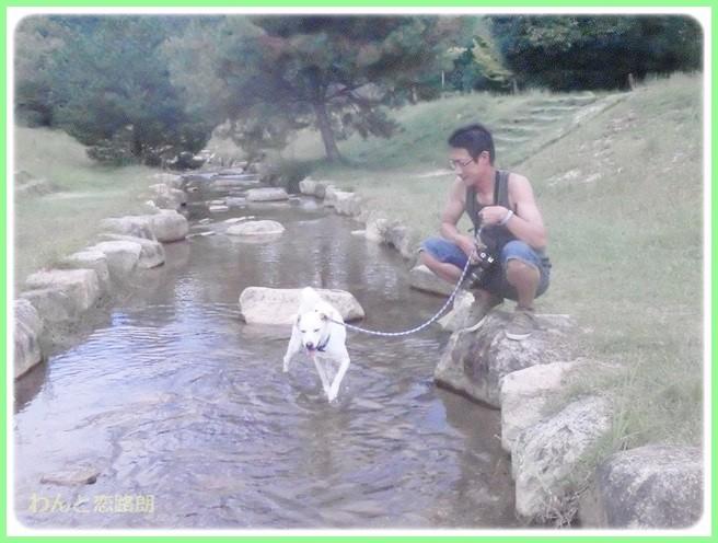 f:id:yasukazu01:20140918223827j:image
