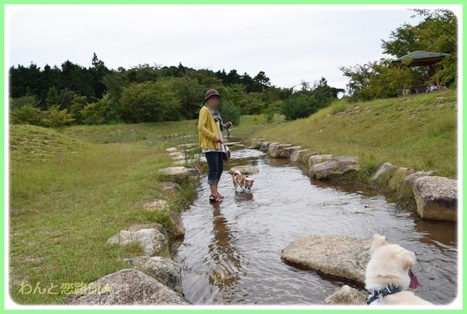 f:id:yasukazu01:20140919222018j:image