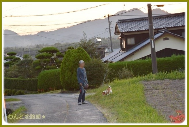 f:id:yasukazu01:20140920205404j:image