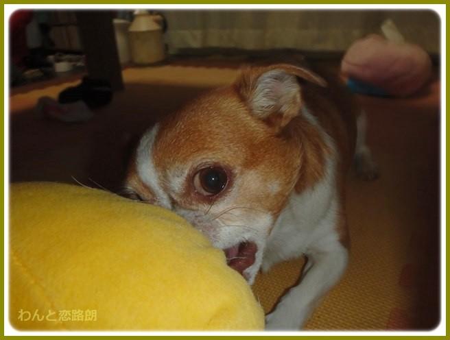 f:id:yasukazu01:20140926222718j:image
