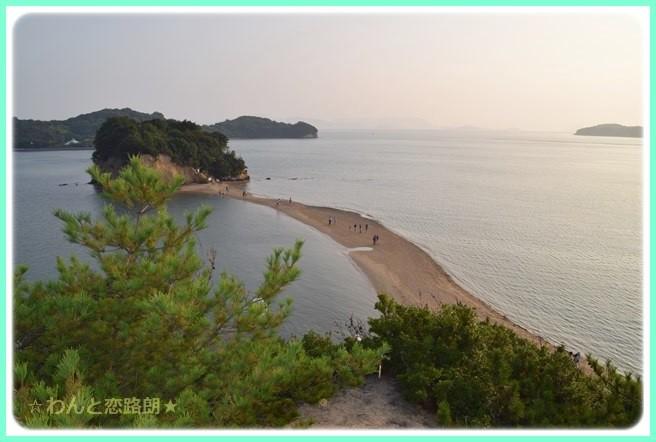 f:id:yasukazu01:20141002214047j:image