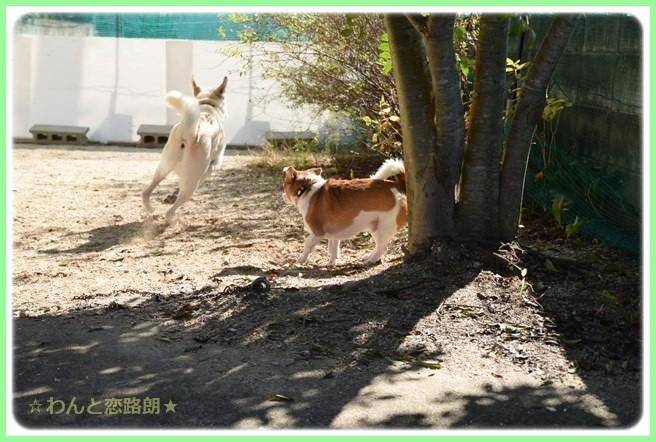 f:id:yasukazu01:20141010203404j:image