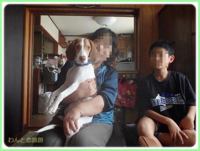 f:id:yasukazu01:20141011202737j:image
