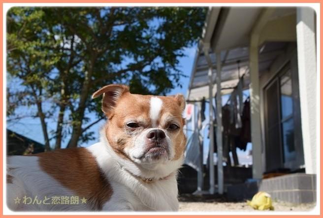 f:id:yasukazu01:20141018202744j:image