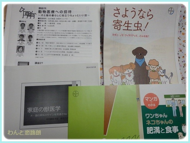 f:id:yasukazu01:20141019205337j:image