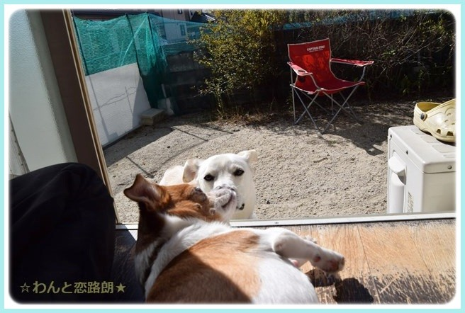 f:id:yasukazu01:20141021221704j:image