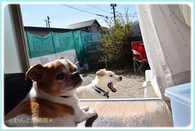 f:id:yasukazu01:20141021221730j:image