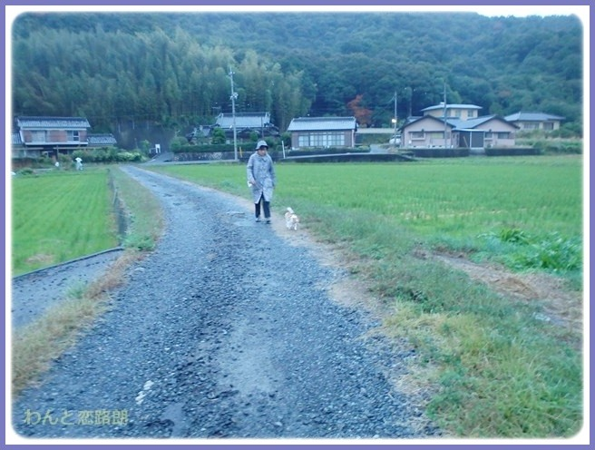 f:id:yasukazu01:20141022193939j:image