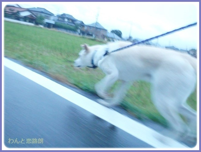 f:id:yasukazu01:20141022194208j:image
