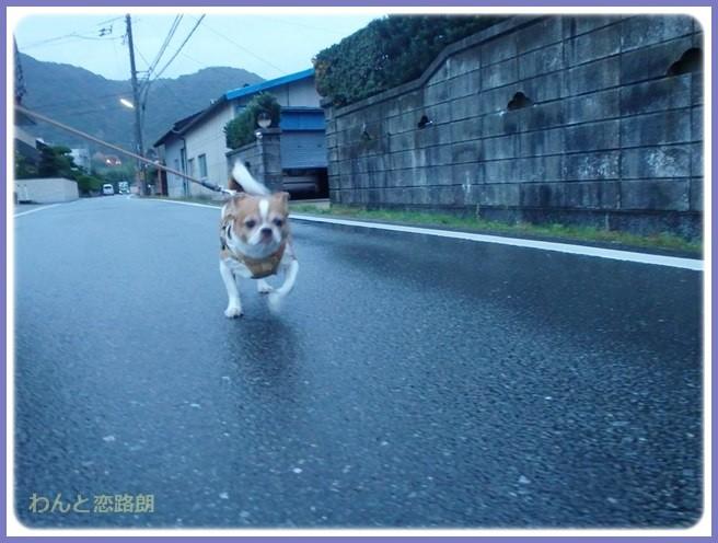 f:id:yasukazu01:20141022194255j:image