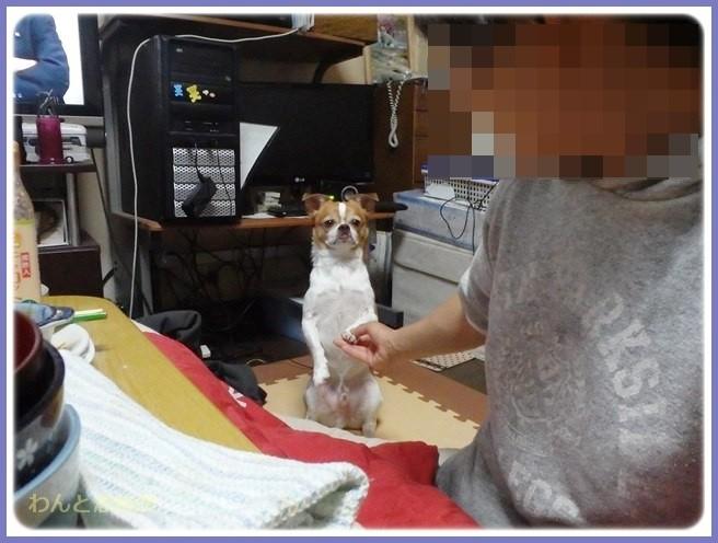 f:id:yasukazu01:20141022194744j:image