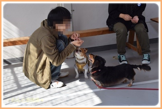 f:id:yasukazu01:20141025201247j:image