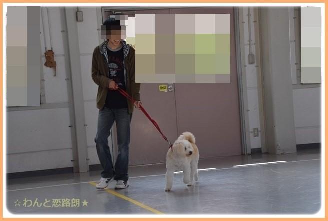 f:id:yasukazu01:20141025203057j:image