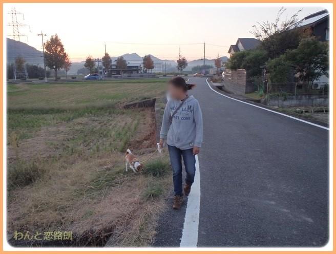 f:id:yasukazu01:20141026213331j:image