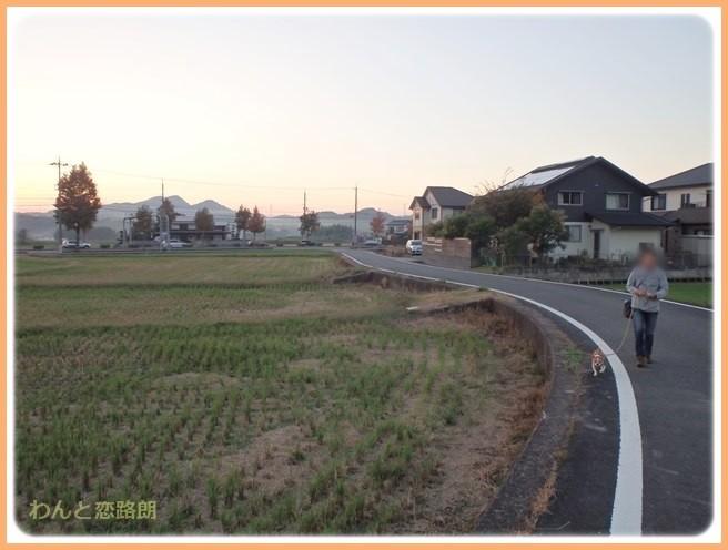 f:id:yasukazu01:20141026213425j:image