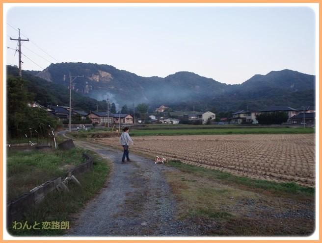 f:id:yasukazu01:20141026213745j:image
