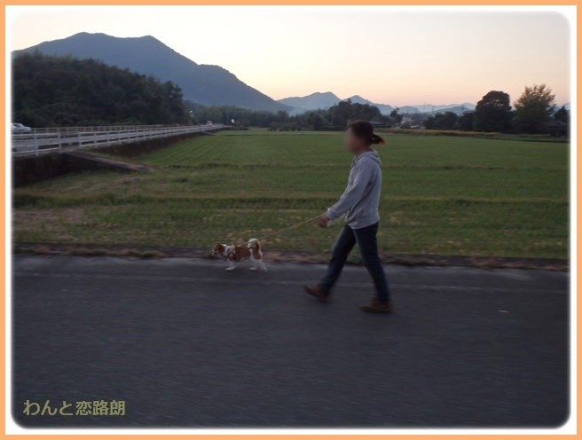 f:id:yasukazu01:20141026214548j:image