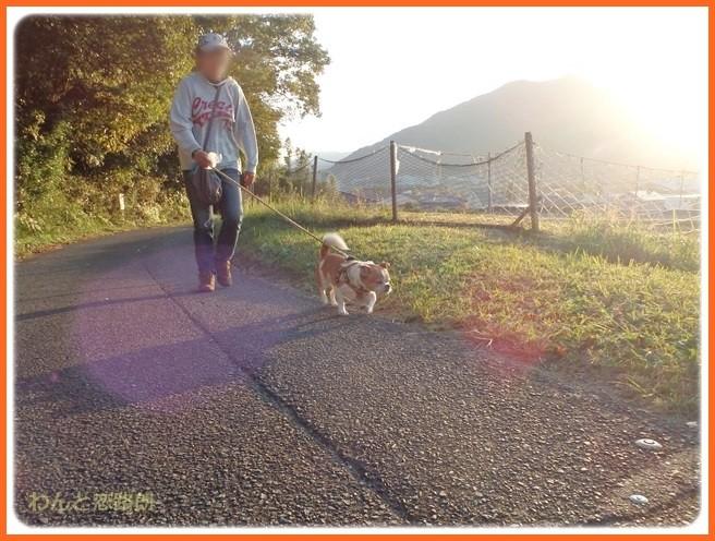 f:id:yasukazu01:20141027210433j:image