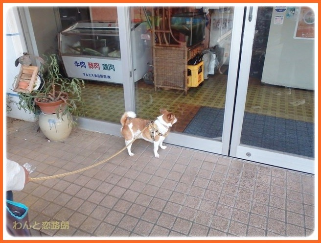 f:id:yasukazu01:20141027210852j:image