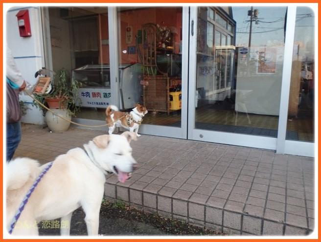 f:id:yasukazu01:20141027211004j:image