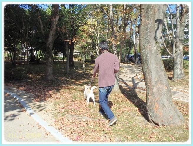 f:id:yasukazu01:20141028195543j:image