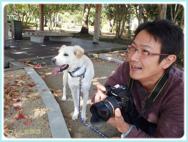 f:id:yasukazu01:20141028200830j:image