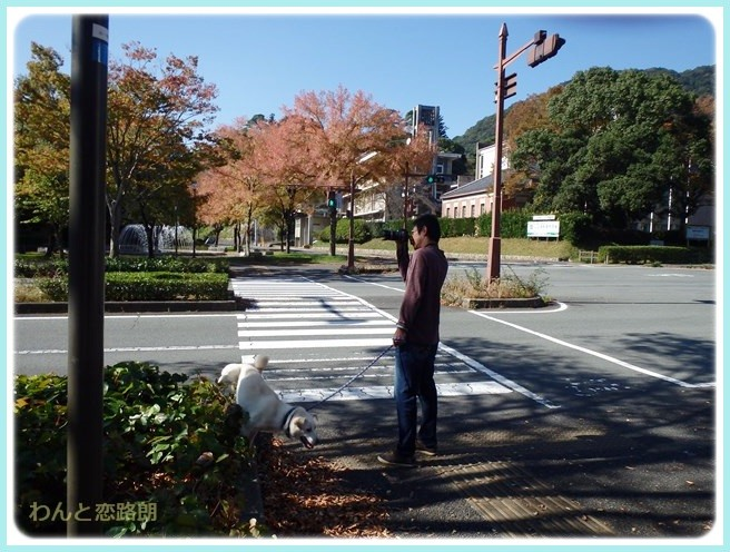 f:id:yasukazu01:20141028202115j:image