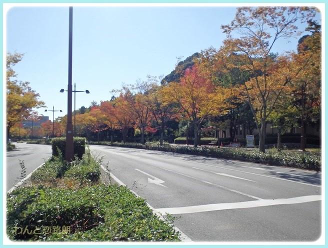 f:id:yasukazu01:20141028202236j:image