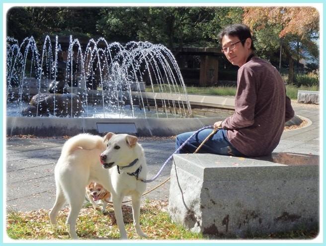 f:id:yasukazu01:20141029194013j:image