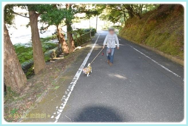 f:id:yasukazu01:20141029202021j:image