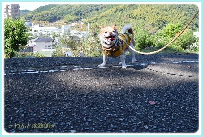 f:id:yasukazu01:20141029202145j:image