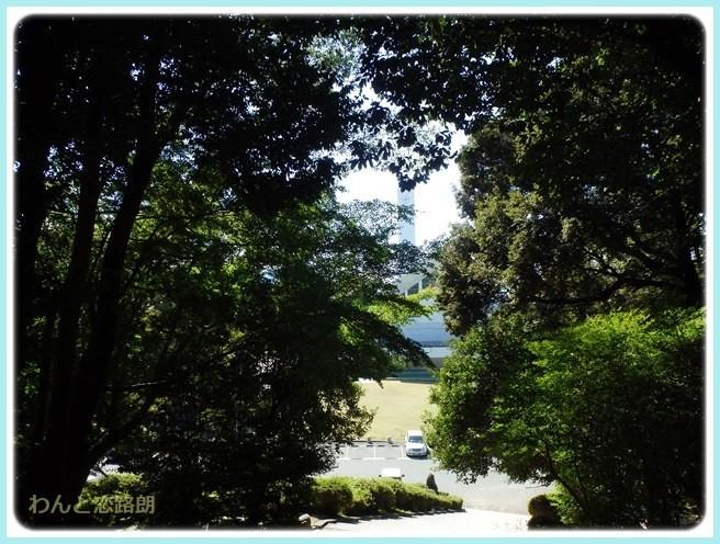 f:id:yasukazu01:20141029202851j:image
