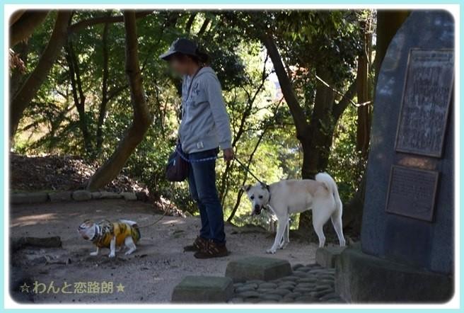 f:id:yasukazu01:20141029203247j:image
