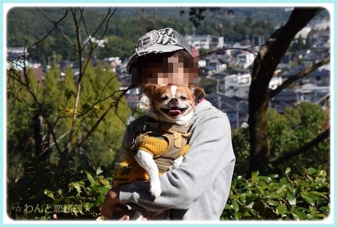 f:id:yasukazu01:20141030224949j:image