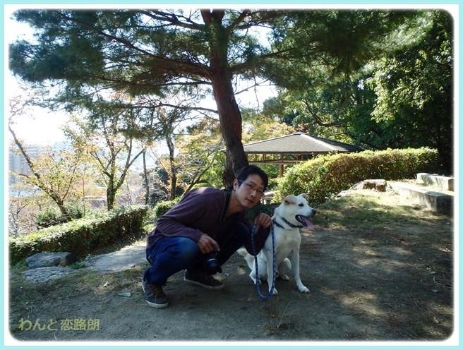 f:id:yasukazu01:20141030225526j:image