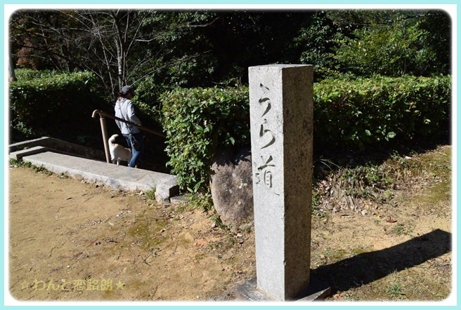 f:id:yasukazu01:20141030225811j:image