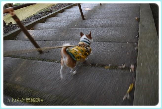 f:id:yasukazu01:20141030225945j:image