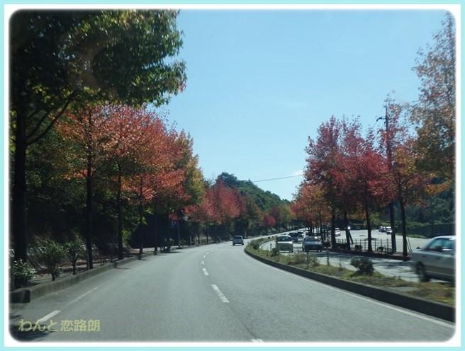 f:id:yasukazu01:20141031203326j:image
