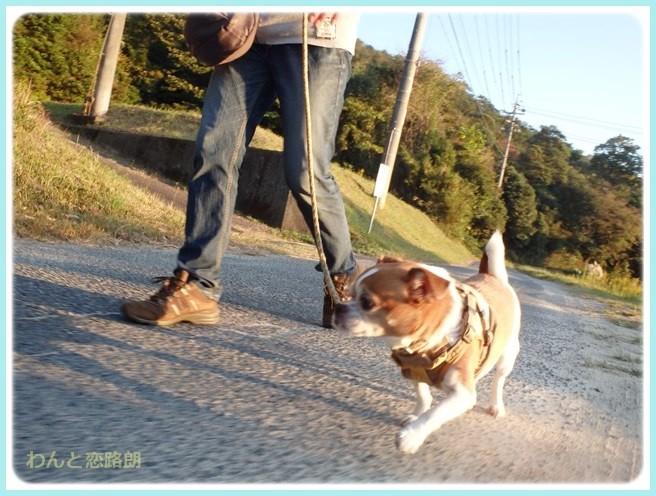 f:id:yasukazu01:20141031204002j:image