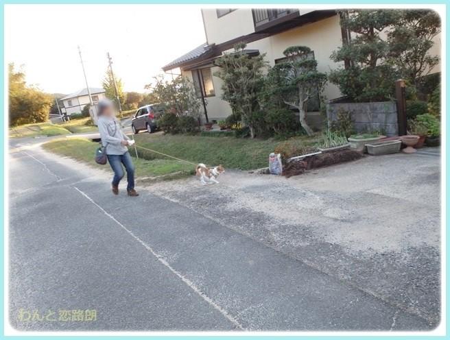 f:id:yasukazu01:20141031204131j:image