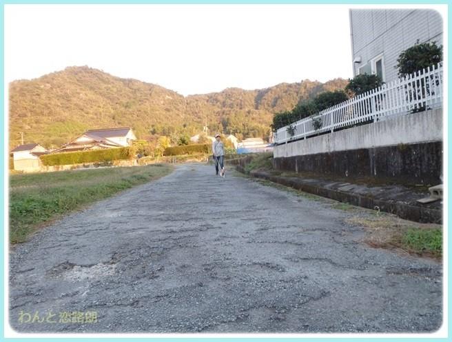 f:id:yasukazu01:20141031204457j:image