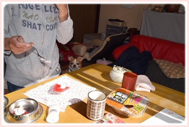 f:id:yasukazu01:20141104215454j:image