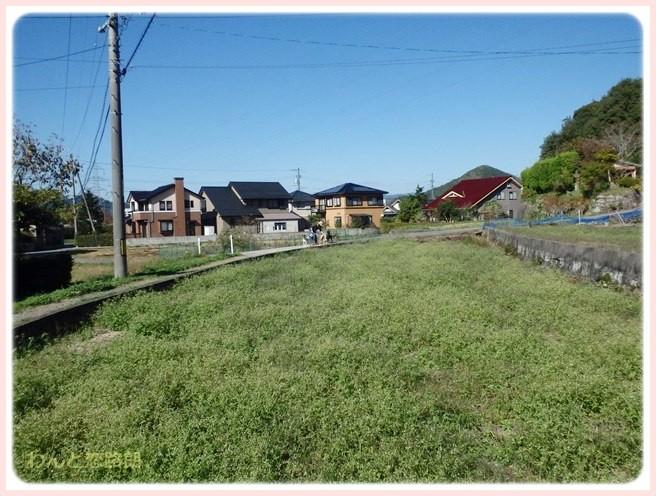 f:id:yasukazu01:20141105215529j:image
