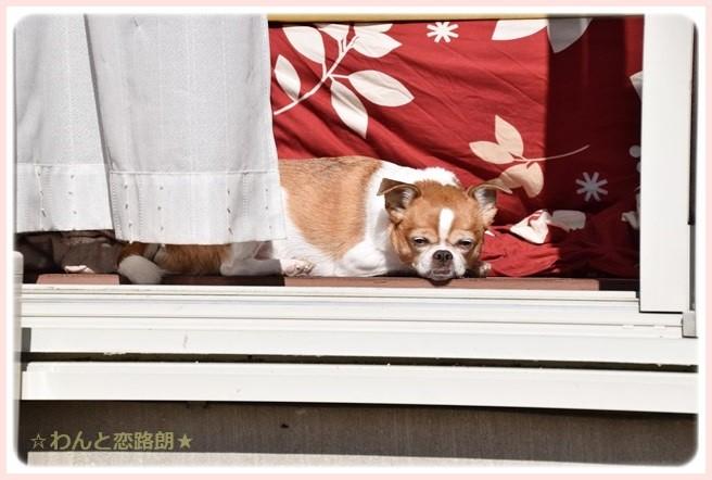 f:id:yasukazu01:20141106223654j:image