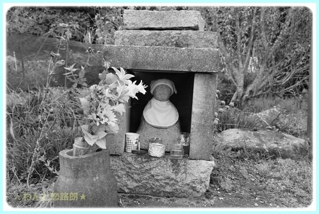 f:id:yasukazu01:20141108202421j:image