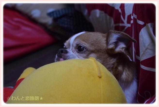 f:id:yasukazu01:20141110223025j:image
