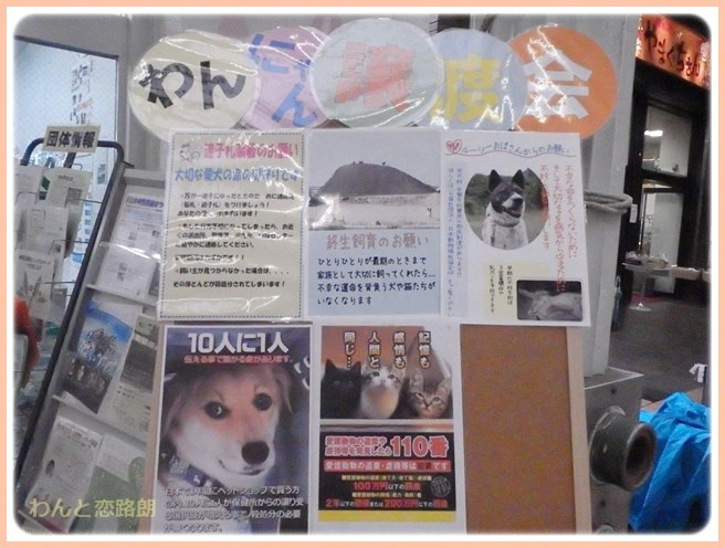f:id:yasukazu01:20141111200333j:image