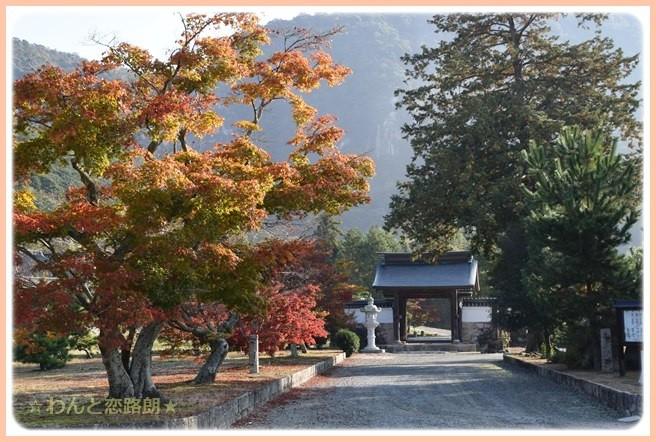 f:id:yasukazu01:20141111203032j:image